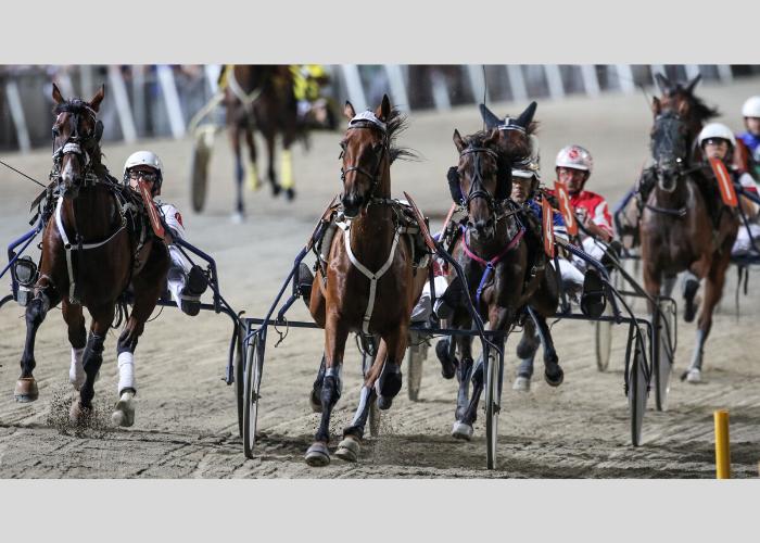 Gran Premio Augusto Calzolari