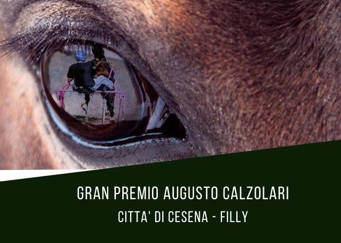 Gran Premio Augusto Calzolari, la versione al femminile del Città di Cesena